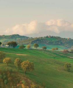 Umbria. Photograph © Mauro Benedetti.